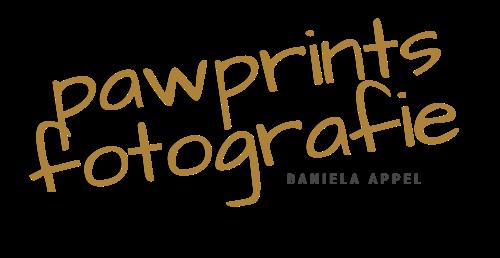 pawprints fotografie